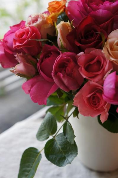 秋の薔薇と煌めきのひととき